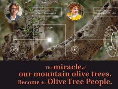 Olive Tree People